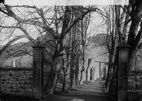 [The avenue leading to the church, Carno]
