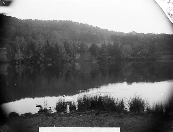 [The lake, Bryngwyn, Llanfyllin]