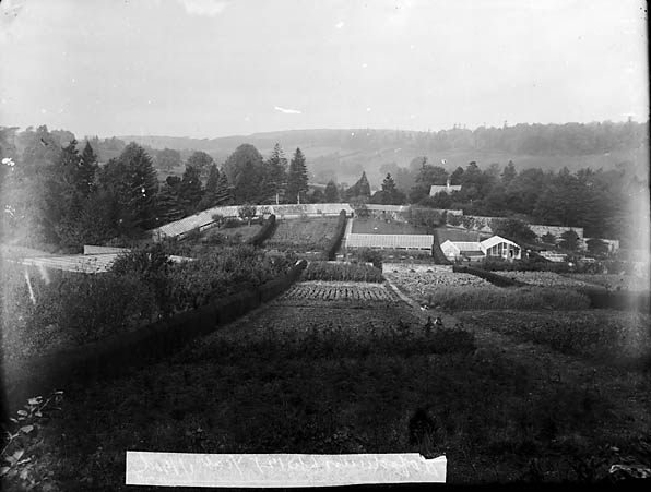 [The garden and glasshouses at Hafodunos, Llangernyw]