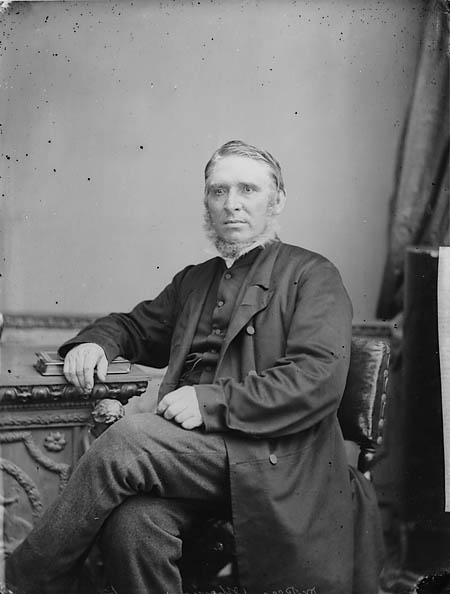 [Dr Thomas Rees (1815-85), Swansea in 1864/5]