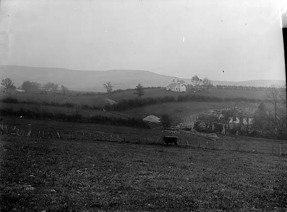 [A rural scene]