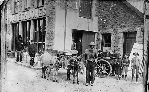 [Donkeys outside a warehouse, Pwllheli (copy of jtoo001)]