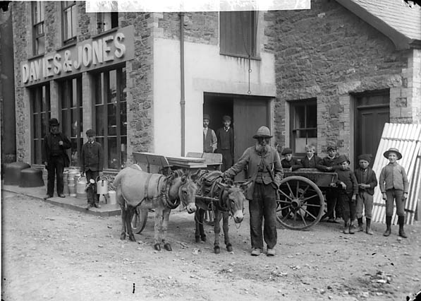 [Donkeys outside the warehouse, Pwllheli]