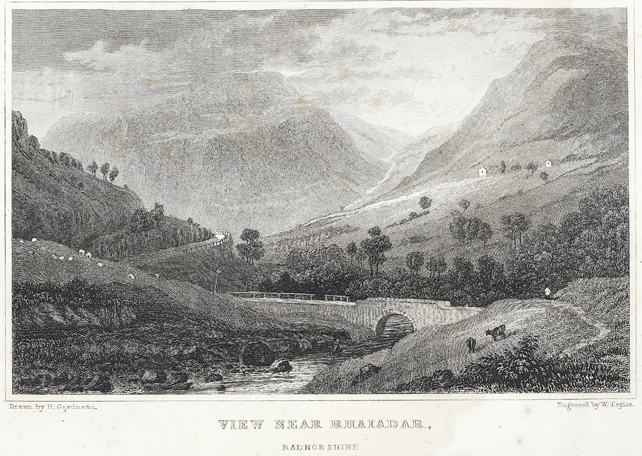 View near Rhaiadar, Radnorshire
