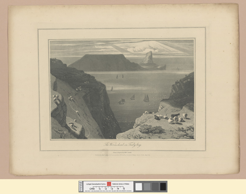 The Worms-head, in Tenby bay Augt 1st 1814