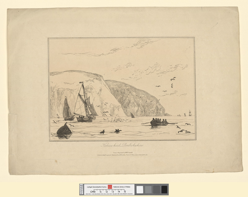 Kemaes-head, Pembrokeshire April 1 1815