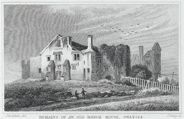 Remains of an old manor house, Swansea