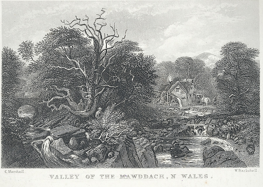 Valley of the Mawddach, N. Wales