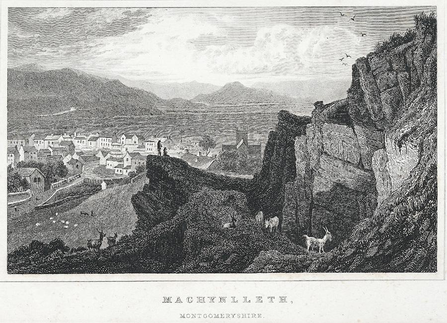Machynlleth, Montgomeryshire