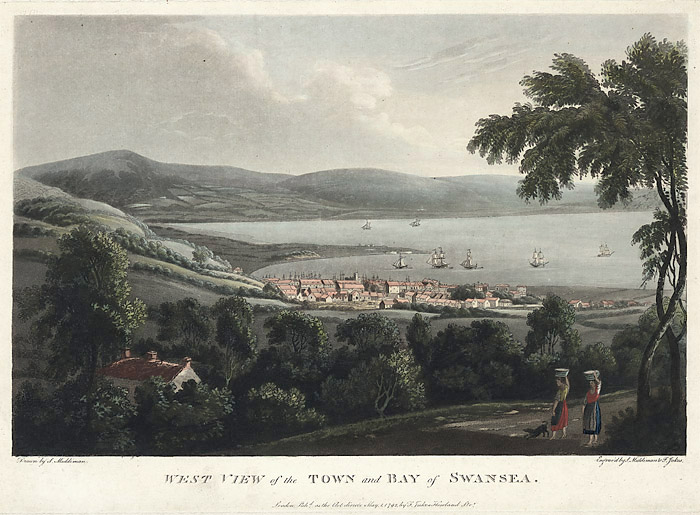 West view of the town and bay of Swansea