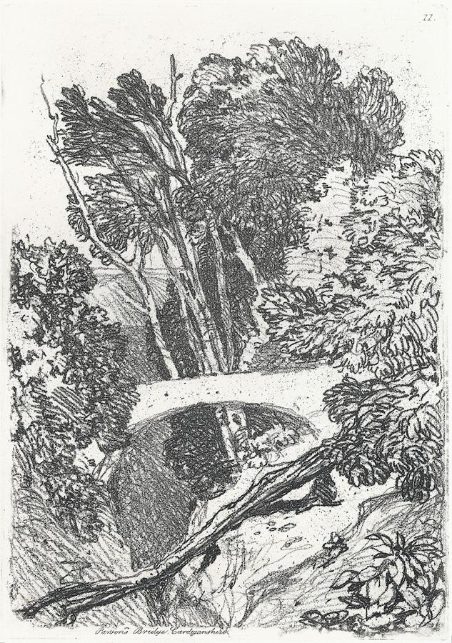Parsons Bridge, Cardiganshire