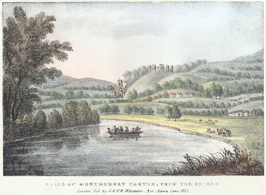 Ruins of Montgomery Castle, from the Severn