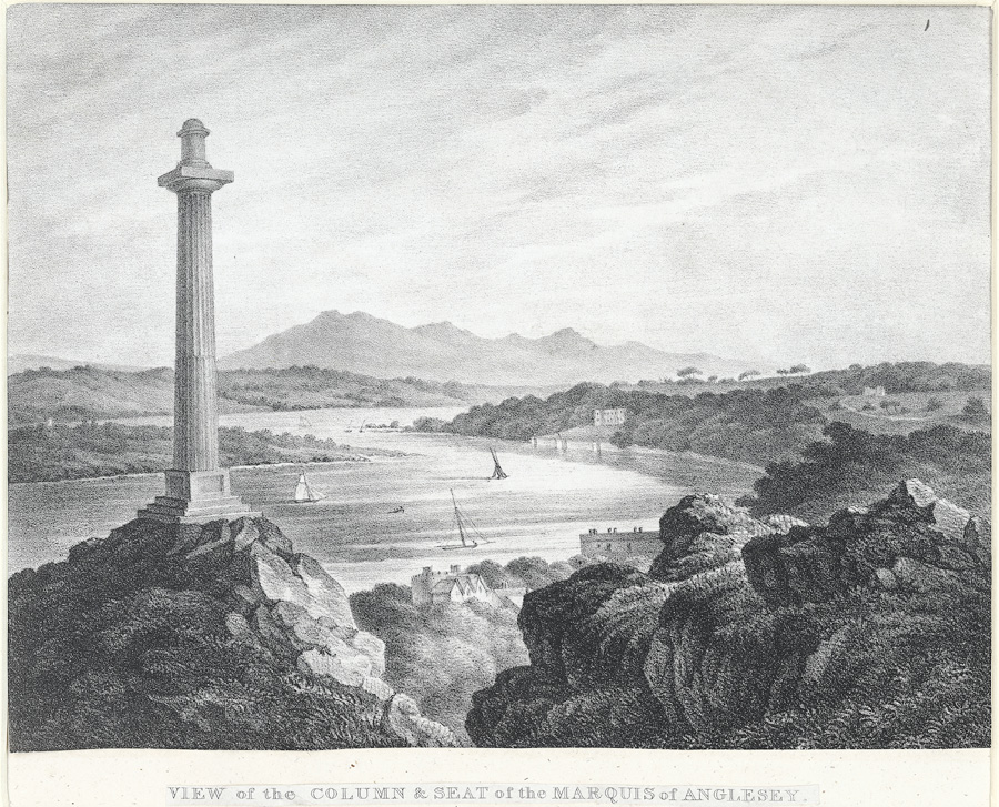 View of the column & seat of the Marquis of Anglesey