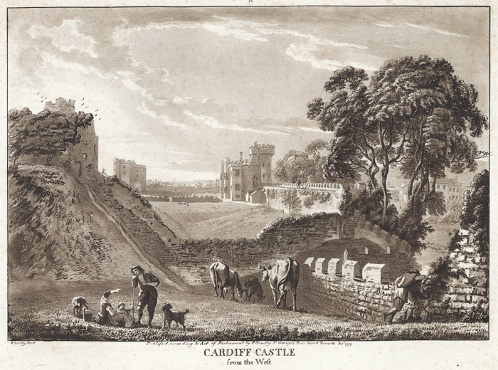 Cardiff castle from the west