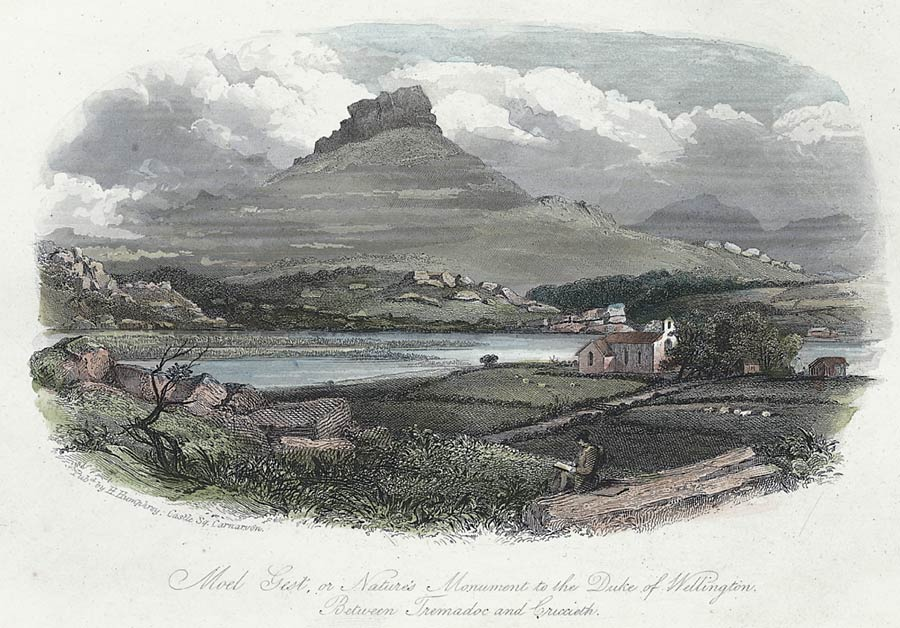 Moel Gest, or nature's monument to the Duke of Wellington