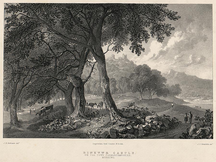 Dinevwr Castle