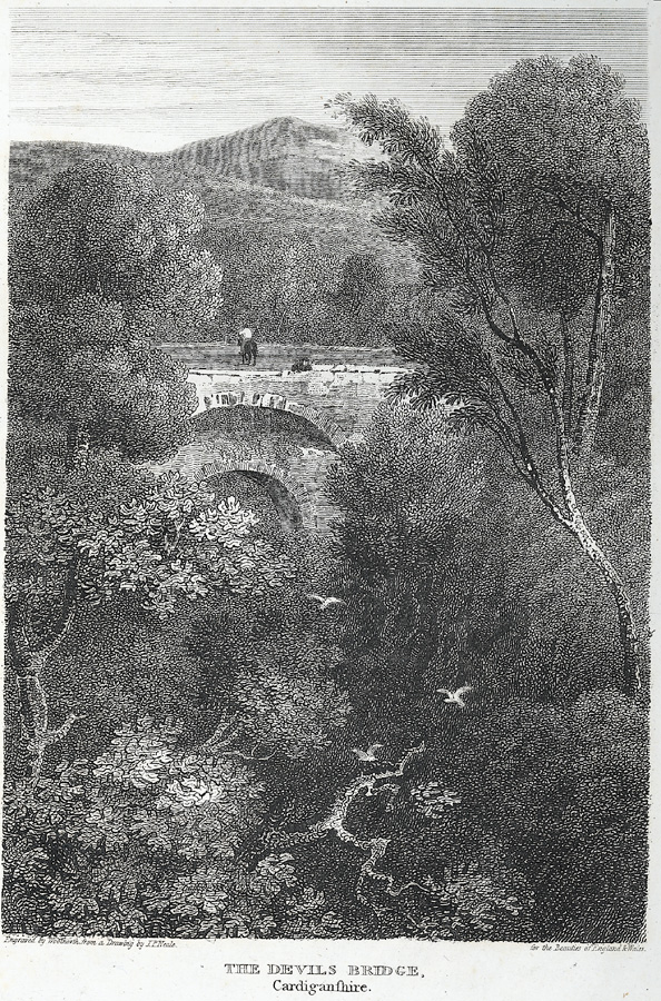 The Devils Bridge, Cardiganshire