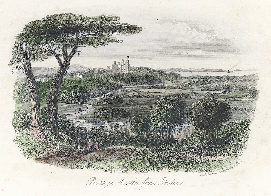 Penrhyn Castle from Penlan
