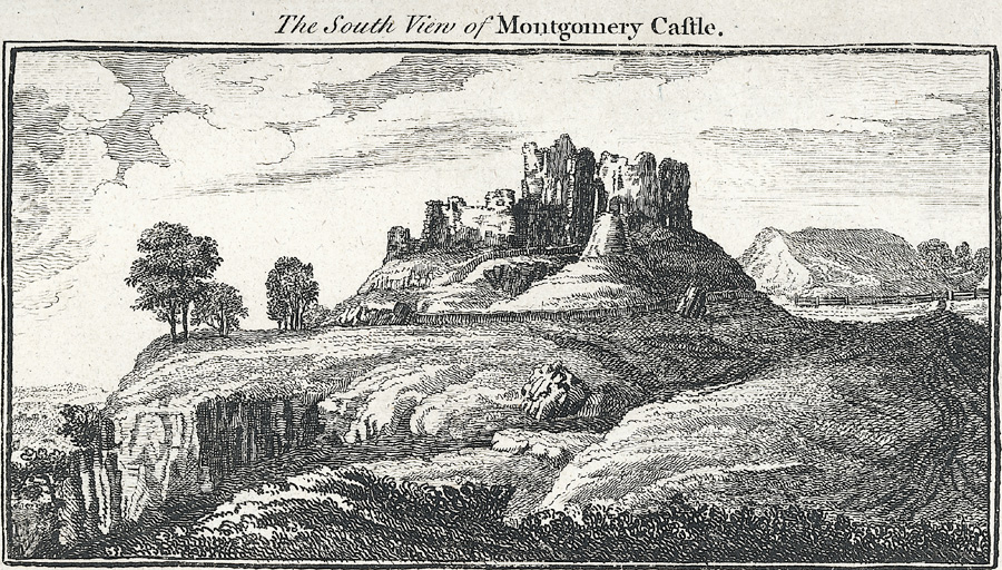 The South View of Montgomery Castle