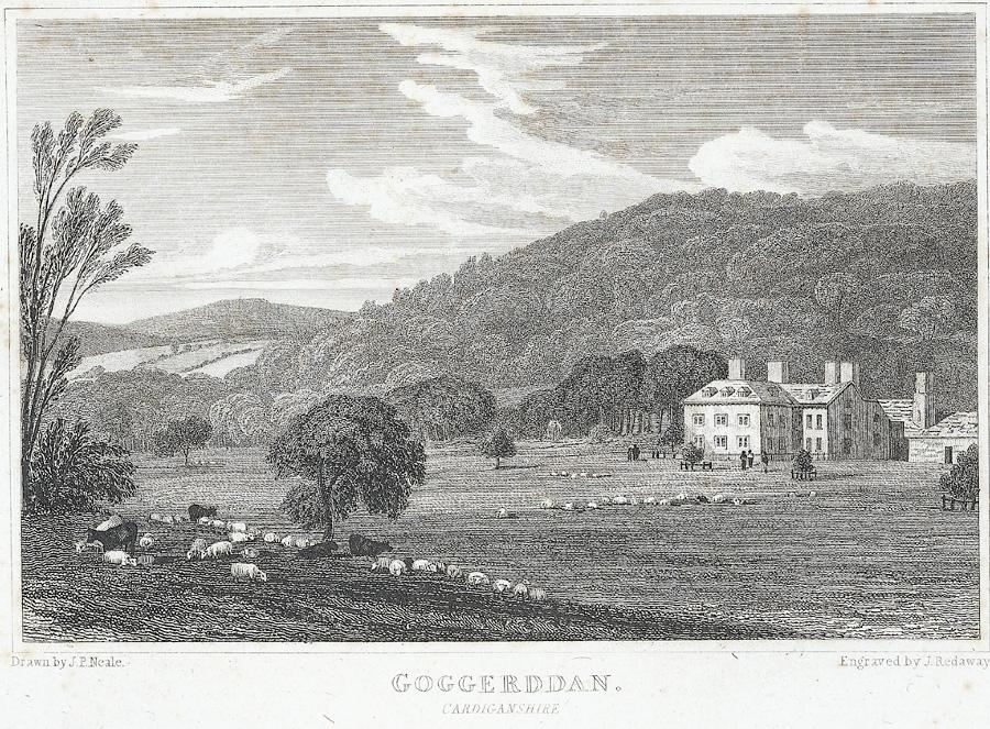 Goggerddan. Cardiganshire