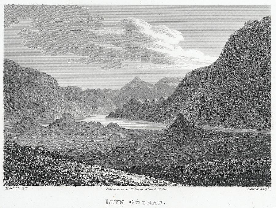 Llyn Gwynan