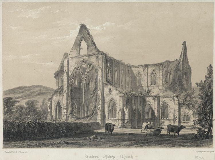 Tintern Abbey Church. View from the N.E