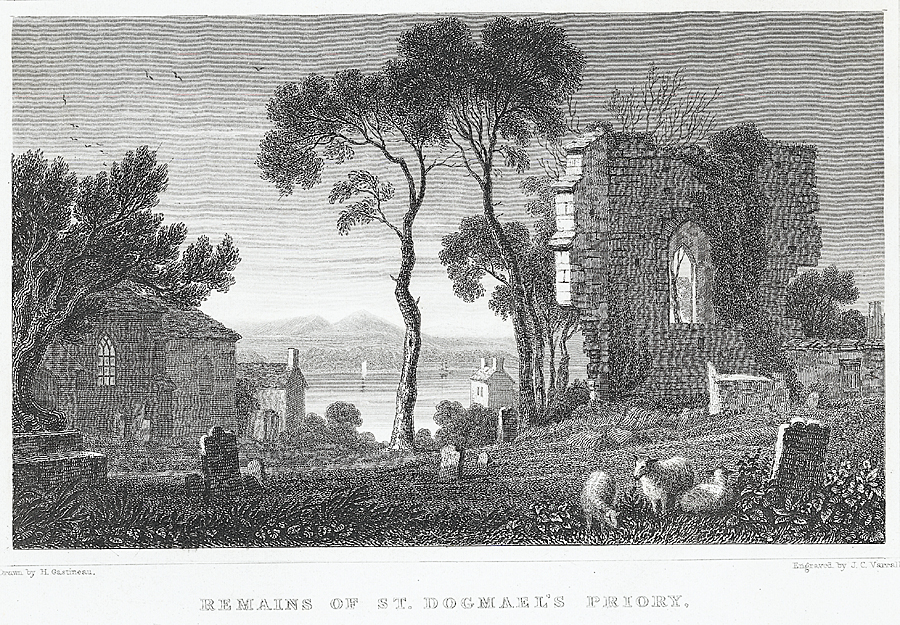 Remains of St. Dogmael's Priory