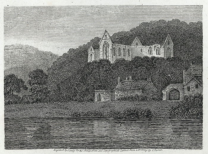 Part of Tintern Abbey