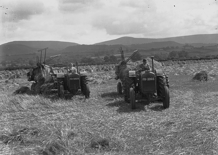 [Man and woman harvesting with tractors]