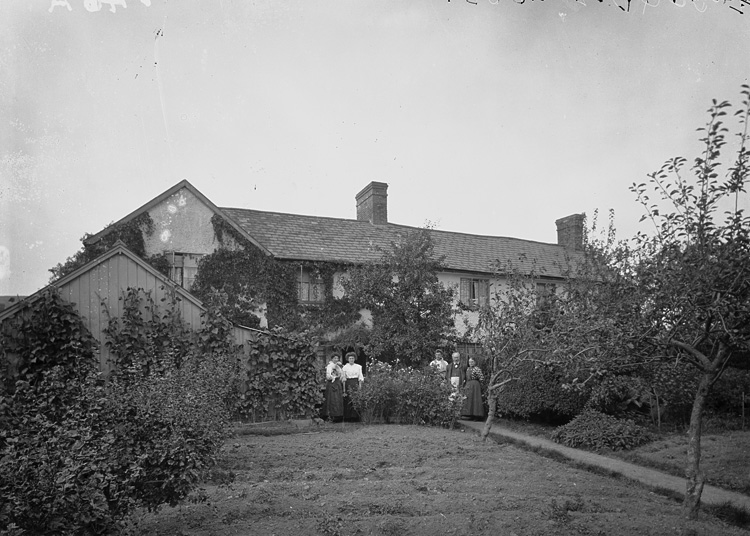 [Bucknell House and orchard]