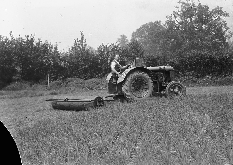 [Man with tractor and roller]