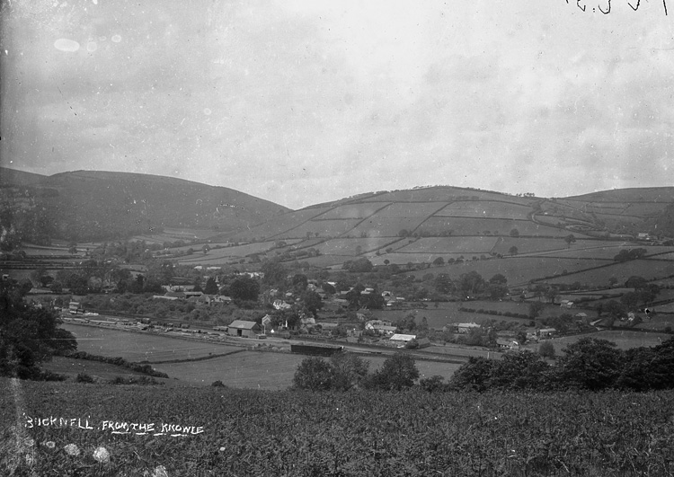 ' Bucknell' from the Knowle