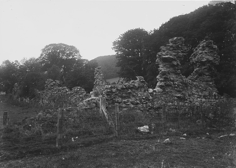 [Archaeological ruins at Abbeycwmhir]