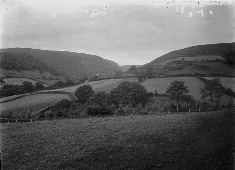 [Rural view]