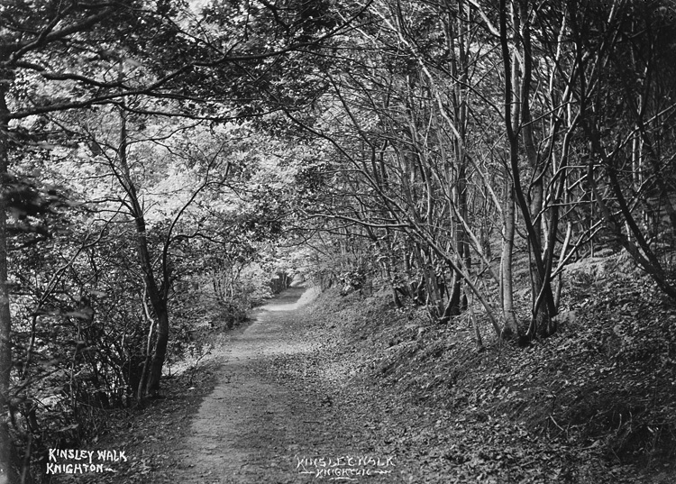Kinsley walk Knighton