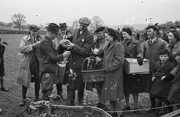 [Ploughing matches at Machynlleth and Llanfechain, Oswestry]