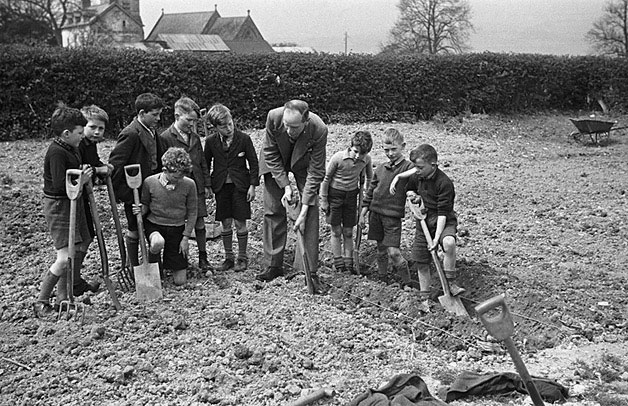 "[Schoolboys from Forden ""dig for victory"" with their headmaster J. Pointon]"