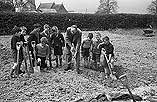 """[Schoolboys from Forden """"dig for victory"""" with their headmaster J. Pointon]"""