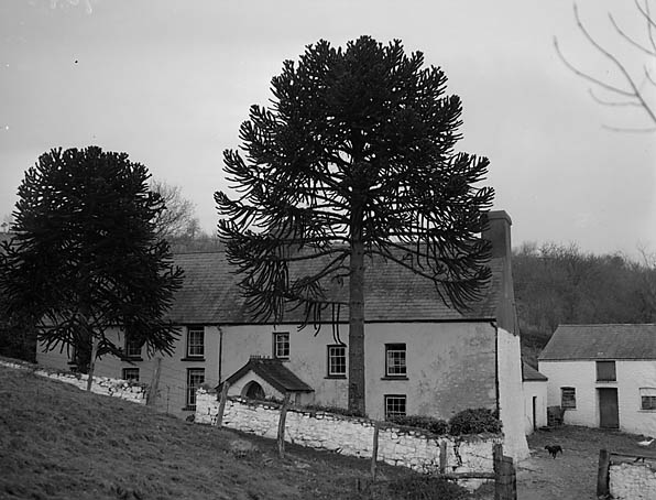 [Pantycelyn, the home of William Williams]