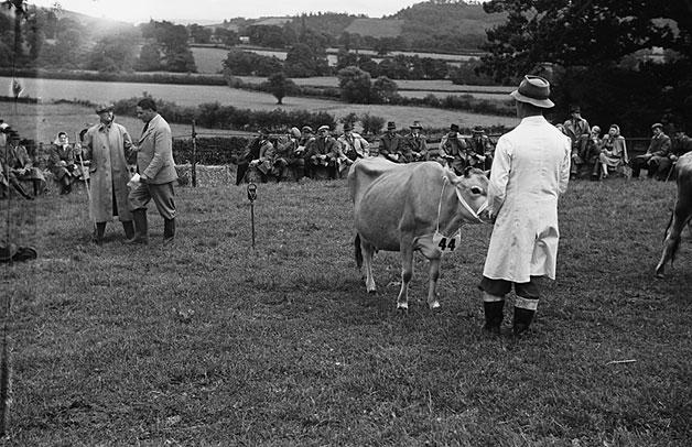 [Farm demonstrations at Llys, [Llanfechain], [Powys], 1948]