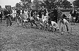 [Welshpool Sunday School sports day held at the senior schooll]