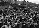 [Town and Country Week at Smithfield, Shrewsbury]