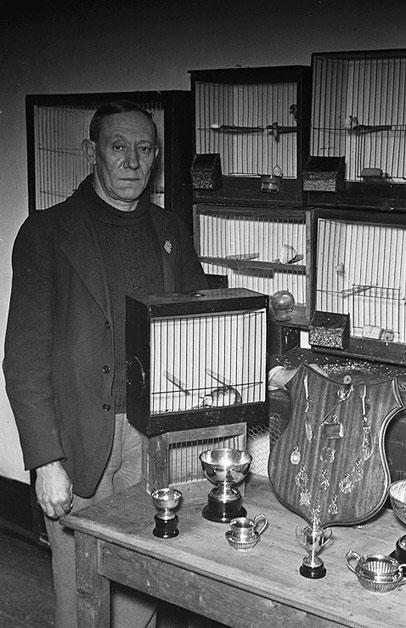 [John Seymour Jones, Newtown bird fancier and breeder]