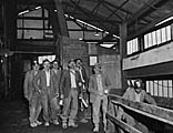 [Ifton Colliery]