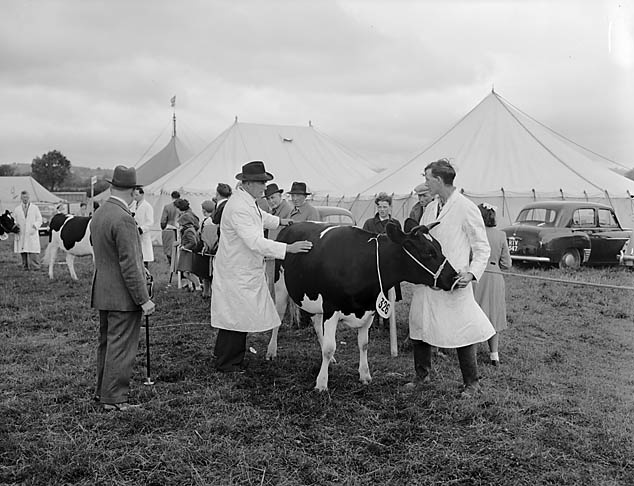 [Oswestry Agricultural Society Show]