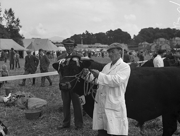 [The North Wales Agricultural Show at Caernarfon]