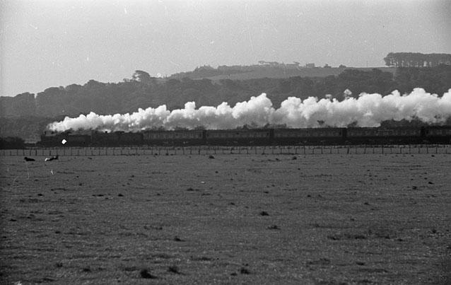 [Steam train]