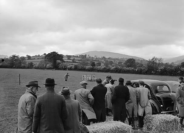 [Sheepdog trials at Llanrhaeadr-ym-Mochnant]