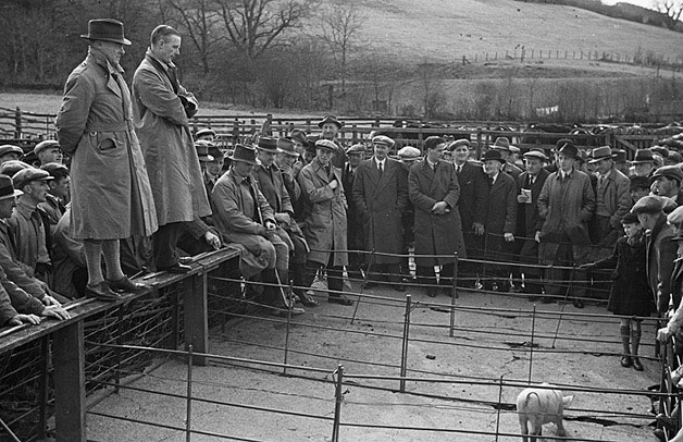[Red Cross market sale held at Cemmaes Road by the Dyfi Valley branch of the NFU]