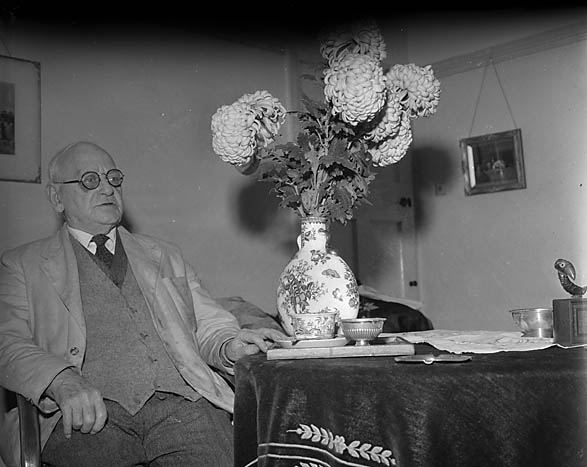 "[H M Kennedy of ""The Boot"", with his chrysanthemums]"